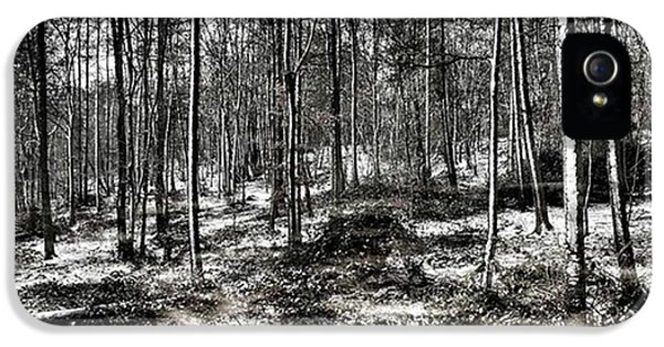 iPhone 5s Case - St Lawrence's Wood, Hartshill Hayes by John Edwards