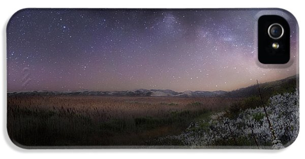 IPhone 5s Case featuring the photograph Star Flowers Square by Bill Wakeley