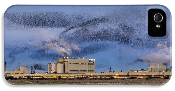 Starling Mumuration IPhone 5s Case