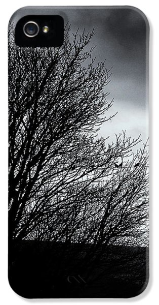Starlings Roost IPhone 5s Case by Philip Openshaw
