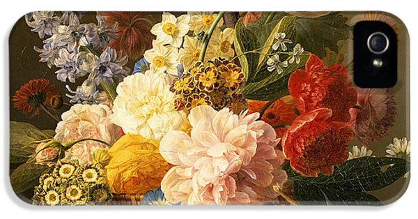Still Life With Flowers And Fruit IPhone 5s Case