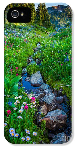 Mount Rushmore iPhone 5s Case - Summer Creek by Inge Johnsson