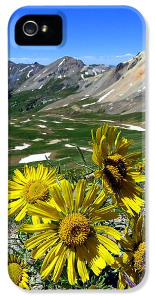 Summer Tundra IPhone 5s Case by Karen Shackles