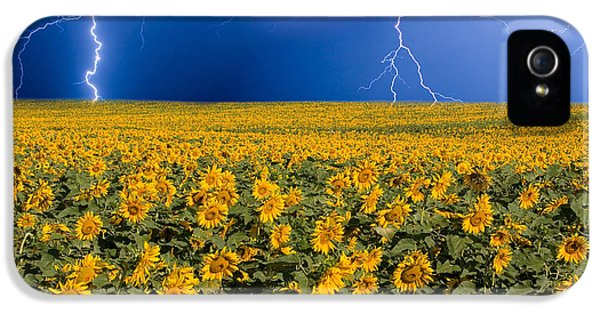 IPhone 5s Case featuring the photograph Sunflower Lightning Field  by James BO  Insogna