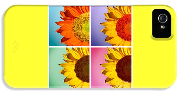 Sunflower iPhone 5s Case - Sunflowers Collage by Mark Ashkenazi