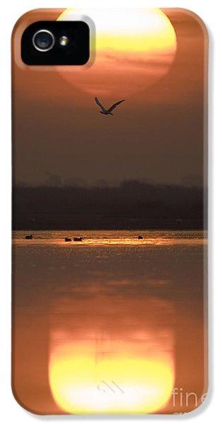 Sunrise Reflection IPhone 5s Case by Hitendra SINKAR