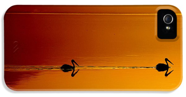Pelican iPhone 5s Case - Sunset Cruising by Laurie Search