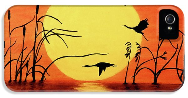 Goose iPhone 5s Case - Sunset Geese by Teresa Wing