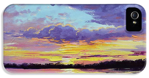 Sunset Reflections IPhone 5s Case