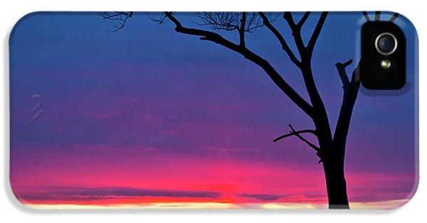 Sunset Sundog  IPhone 5s Case by Ricky L Jones