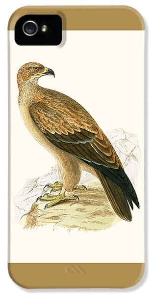 Tawny Eagle IPhone 5s Case by English School
