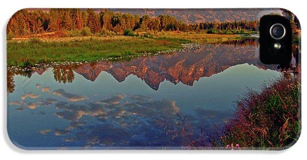 Mountain iPhone 5s Case - Teton Wildflowers by Scott Mahon