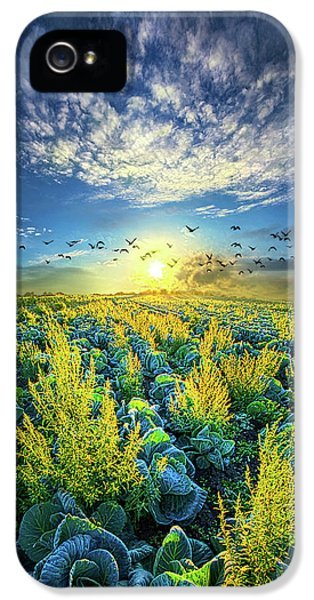 That Voices Never Shared IPhone 5s Case by Phil Koch