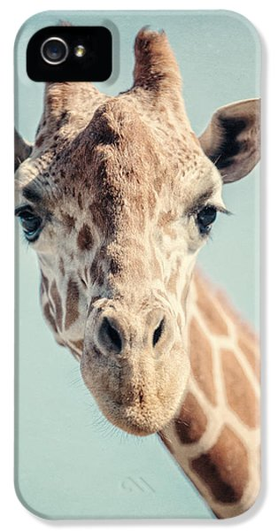 The Baby Giraffe IPhone 5s Case by Lisa Russo