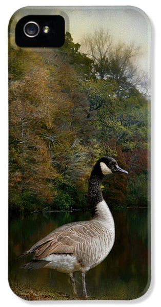 The Canadian Goose IPhone 5s Case