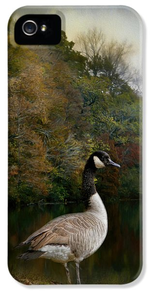 The Canadian Goose IPhone 5s Case by Jai Johnson