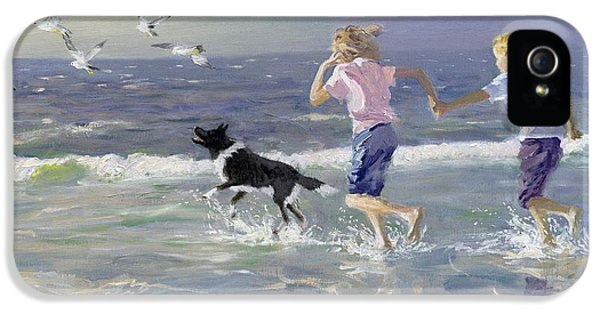 Seagull iPhone 5s Case - The Chase by William Ireland