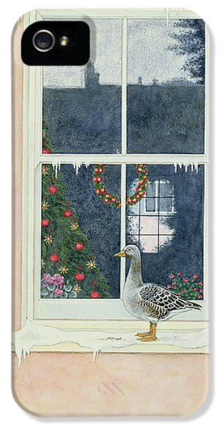 The Christmas Goose  IPhone 5s Case by Ditz
