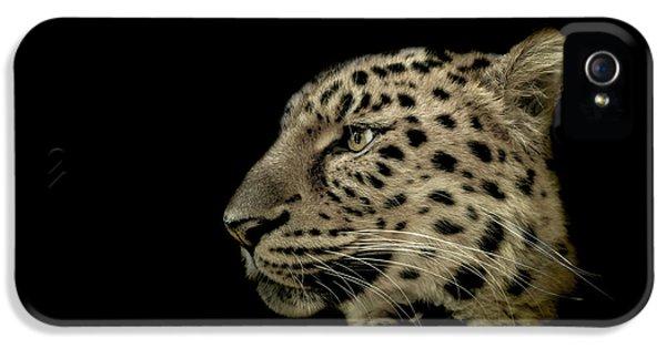 Leopard iPhone 5s Case - The Defendant by Paul Neville