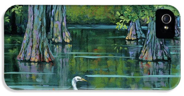 Heron iPhone 5s Case - The Fisherman by Dianne Parks