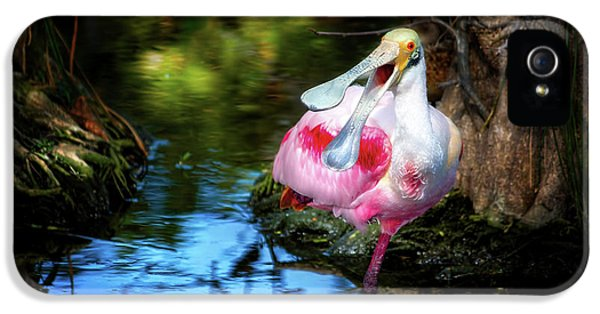 The Happy Spoonbill IPhone 5s Case by Mark Andrew Thomas