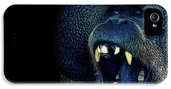 The Laughing Orangutan IPhone 5s Case by Martin Newman
