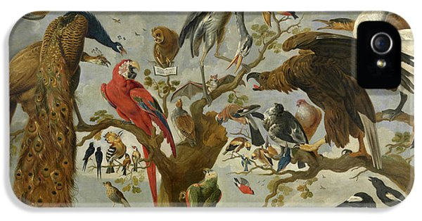 Meadowlark iPhone 5s Case - The Mockery Of The Owl by Jan van Kessel