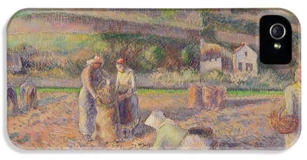 The Potato Harvest IPhone 5s Case by Camille Pissarro