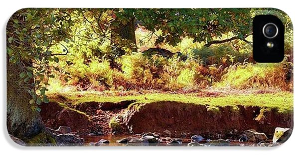 Sky iPhone 5s Case - The River Lin , Bradgate Park by John Edwards