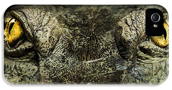 Crocodile iPhone 5s Case - The Soul Searcher by Paul Neville