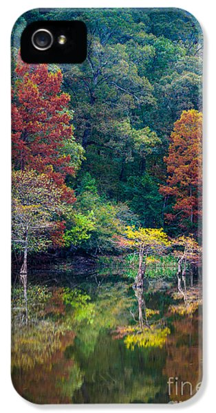 Beaver iPhone 5s Case - The Stillness Of The River by Inge Johnsson