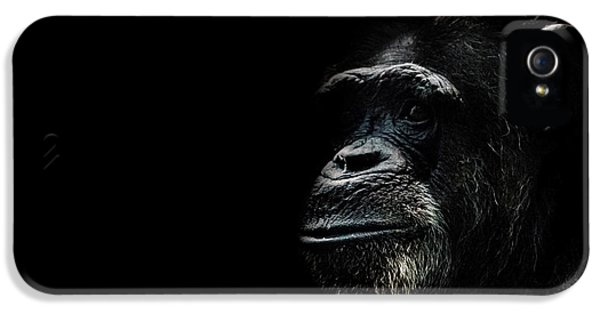 The Wise IPhone 5s Case