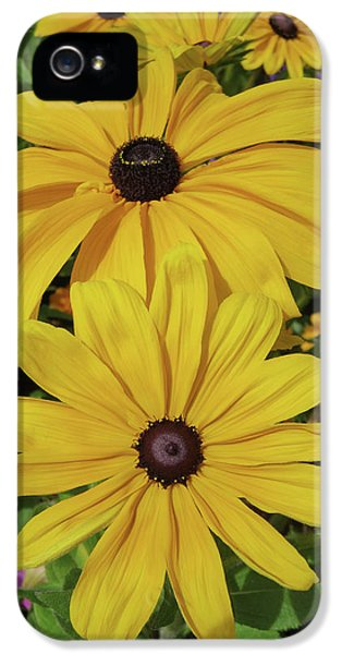 IPhone 5s Case featuring the photograph Thirteen by David Chandler