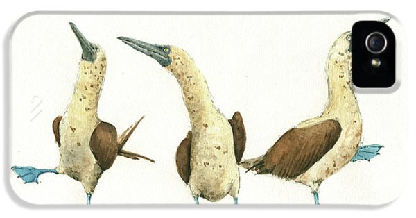 Three Blue Footed Boobies IPhone 5s Case by Juan Bosco