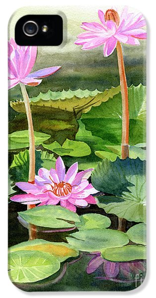 Lily iPhone 5s Case - Three Pink Water Lilies With Pads by Sharon Freeman
