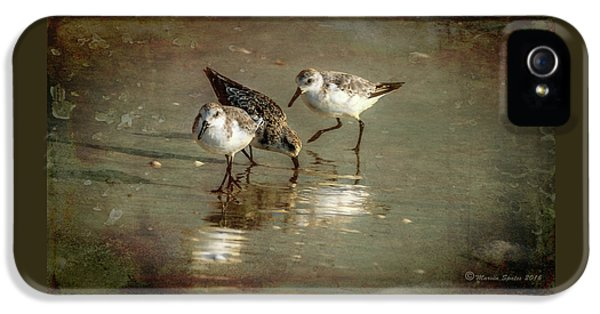 Sandpiper iPhone 5s Case - Three Together by Marvin Spates