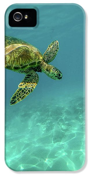 Tortoise IPhone 5s Case by Happy Home Artistry