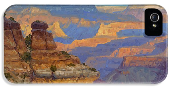Grand Canyon iPhone 5s Case - Transient Light by Cody DeLong