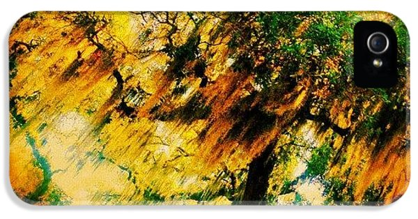 Edit iPhone 5s Case - #tree #green #yellow #colourful #sc by Katie Williams