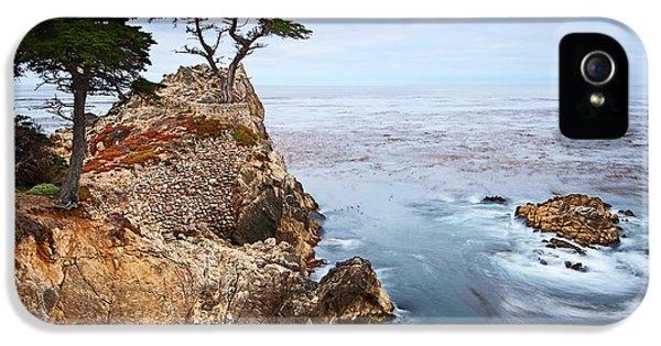 Water Ocean iPhone 5s Case - Tree Of Dreams - Lone Cypress Tree At Pebble Beach In Monterey California by Jamie Pham
