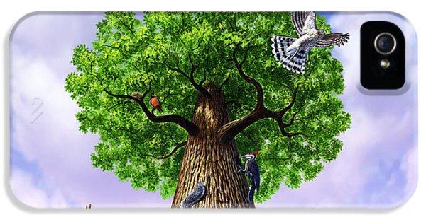 Tree Of Life IPhone 5s Case by Jerry LoFaro