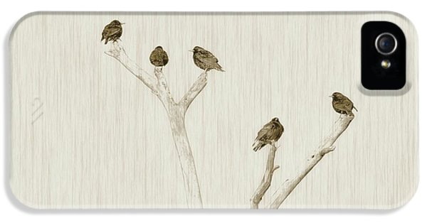 Treetop Starlings IPhone 5s Case by Benanne Stiens