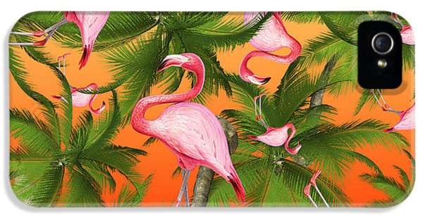 Tropical IPhone 5s Case