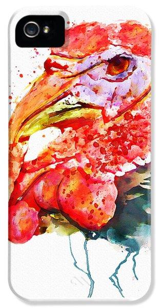 Turkey Head IPhone 5s Case by Marian Voicu