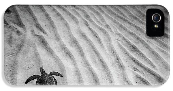 Turtle Ridge IPhone 5s Case by Sean Davey