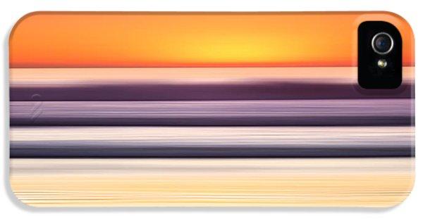Venice Beach iPhone 5s Case - Venice Steps by Sean Davey