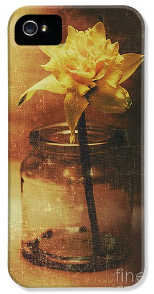 Vintage Daffodil Flower Art IPhone 5s Case