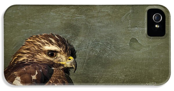 Osprey iPhone 5s Case - Visions Of Solitude by Evelina Kremsdorf