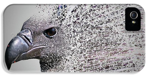 Griffon iPhone 5s Case - Vulture Break Up by Martin Newman