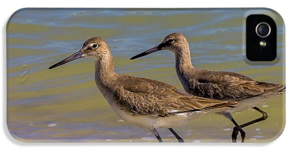 Sandpiper iPhone 5s Case - Walk Together Stay Together by Marvin Spates
